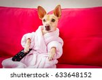 chihuahua dog watching tv or a... | Shutterstock . vector #633648152