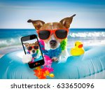 jack russel dog resting and... | Shutterstock . vector #633650096