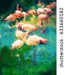 Watercolors Painting   Flamingo ...