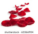 Stock photo beautiful rose petals on a white background 63366904