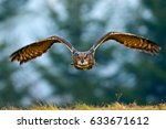 flying eurasian eagle owl with... | Shutterstock . vector #633671612