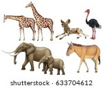 five types of wild animals... | Shutterstock .eps vector #633704612