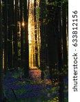 the rising sun peaks through... | Shutterstock . vector #633812156