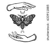 human hands hold a moth the... | Shutterstock .eps vector #633911885