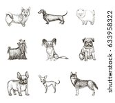 a collection of sketches breed ... | Shutterstock .eps vector #633958322