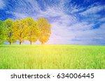 landscape beautiful tree in a... | Shutterstock . vector #634006445