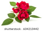 Stock photo red rose flower bouquet isolated on white background cutout 634213442