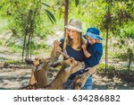 mother and son feeding... | Shutterstock . vector #634286882