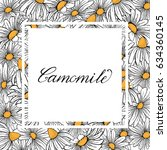 vintage camomile graphic vector ... | Shutterstock .eps vector #634360145