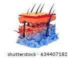 human skin anatomy. 3d render | Shutterstock . vector #634407182