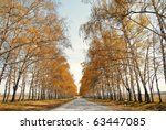 perspective view onto the road... | Shutterstock . vector #63447085