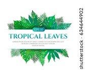 tropical leaves frame design...   Shutterstock .eps vector #634644902