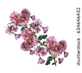 chrysanthemum branch watercolor. | Shutterstock . vector #634646432