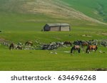 typical mongolian landscape and ... | Shutterstock . vector #634696268