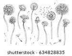 floral elements for design ...   Shutterstock .eps vector #634828835
