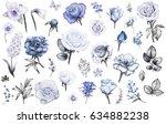 Set Elements Of Rose Narcissus...