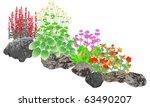 Rockery  Rock Pool Edging Plants