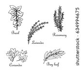 set of hand drawn spices  basil ...   Shutterstock .eps vector #634994675