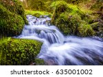 Forest Stream Waterfall....