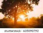 sunset or sunrise in misty... | Shutterstock . vector #635090792