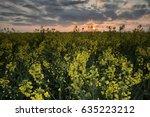 spring landscape with sunrise... | Shutterstock . vector #635223212