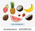beautiful hand drawn fruits... | Shutterstock .eps vector #635289242