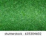 beautiful green grass texture | Shutterstock . vector #635304602