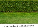 green hedge fence with green... | Shutterstock . vector #635357396