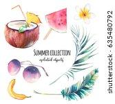 watercolor summer set. hand... | Shutterstock . vector #635480792