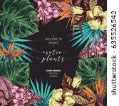 vector hand drawn tropical... | Shutterstock .eps vector #635526542