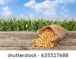 Dry Uncooked Corn Grains In...