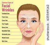 common types of facial wrinkles.... | Shutterstock .eps vector #635549162