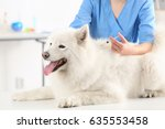 Small photo of Veterinarian giving injection to dog in clinic