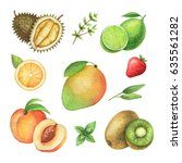watercolor organic set of... | Shutterstock . vector #635561282