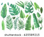watercolor set of tropical... | Shutterstock . vector #635589215