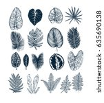 tropical collection. botanical... | Shutterstock .eps vector #635690138