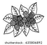 doodle floral pattern in black...   Shutterstock .eps vector #635806892