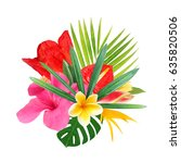 tropical flowers on a white... | Shutterstock . vector #635820506