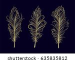 set of gold  feather. vector... | Shutterstock .eps vector #635835812
