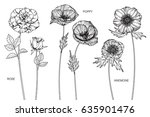 collection of rose  poppy ... | Shutterstock .eps vector #635901476