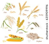 cereal plants  icons... | Shutterstock . vector #635909996