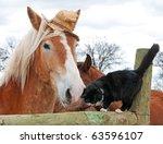 belgian draft horse wearing a... | Shutterstock . vector #63596107