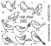 Stock vector bird collection collection of cute hand drawn bird doodles black on white vector set 636021146