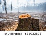 deforestation  destruction of... | Shutterstock . vector #636033878