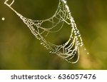 dew drops on a spider web in... | Shutterstock . vector #636057476