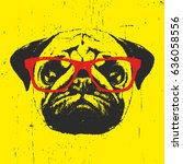Portrait Of Pug Dog With...