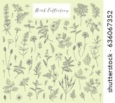 vector hand drawn collection of ... | Shutterstock .eps vector #636067352