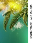 palm trees on the background of ... | Shutterstock . vector #636153485