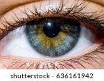 this is a macro of a human eye.  | Shutterstock . vector #636161942