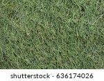 grass clippings | Shutterstock . vector #636174026